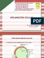 DIAPO DE INFLAMACION OCULAR.odp