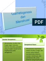 felisdomestica-140412235744-phpapp01