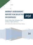Final Report CFI Market Assessment