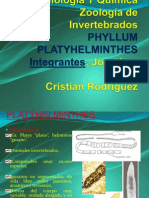 Platelmintos Jm y Cr