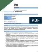 14 2013-02-28 Ficha Arte Procesual