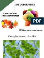 Clase1-Tipos de Colorantes