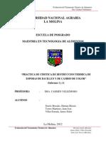 CINETICA DE DESTRUCCION TERMICA.docx