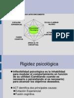 Presentacion Act PDF