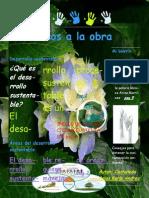Boletin Informativo Castañeda Arias Karla Andrea