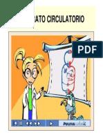 APARATO+CIRCULATORIO_0