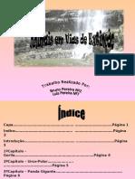 Capa……………………………………………… ……………………………Página 1 Índice…………………………………………… …………………………….Página 2 Introdução………………………………………