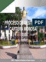 Proceso de Gestion de Cartera Morosa
