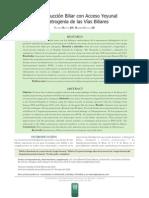 Reconstrucción Biliar con Acceso Y eyunal.pdf