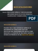 TEMA Enzimas conf.pptx