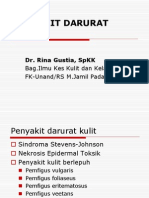 Sindroma Stevens Johnson