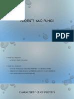johnsonb protists and fungi