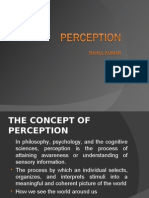The Concept of Perception