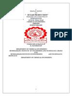 nics final report.pdf