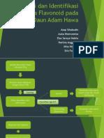 Isolasi Dan Identifikasi Senyawa Flavonoid Pada Daun Adam
