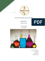 relatório bioquimica