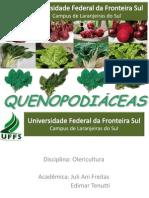 QUENOPODIÁCEAS - Olericultura