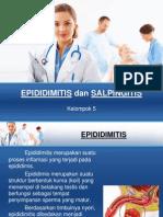 Epididimitis Dan Salpingitis