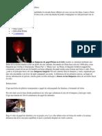 Cómo Hacer Lámparas de Papel Voladoras