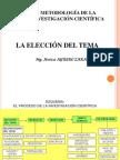 Elección Tema