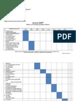 Diagrama Gantt -Anghel Mariana Si Tilita Andreea