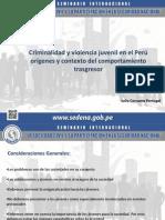 Criminalidad y Violencia Juvenil en El PerúSEDENA