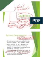 fernandogama-auditoriagovernamental-002