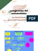 Integración Del Metabolismo