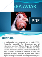coleraaviarexpfinal-130528090123-phpapp01.pptx