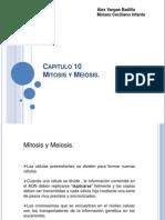 Mitosis y Meiosis[1]