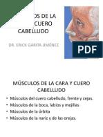 Músculos de La Cara y Cuero Cabelludo
