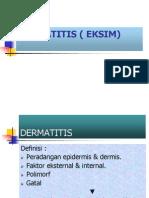 Dermatitis (Eksim)