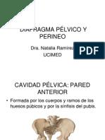 Diafragma Pélvico y Perine