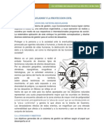 Desastres y Proteccion Civl Sr y Proteccion Civil