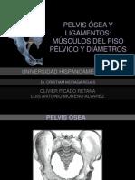 Presentación Pelvis