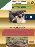 DISEÑO DE INSTALACIONES PRA VACUNOS DE CARNE.pdf