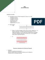 anatomia (2).pdf