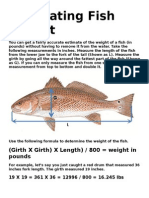 Estimating Fish Weight - Copy.doc