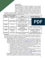 Estructura y Patologia de La Piel