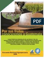 Encuesta Nacional Agrícola 2006 Guatemala