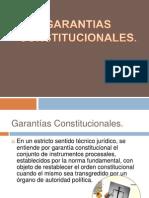 Garantias-Constitucionales (1)