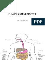 Fungsi Sistem Digestif