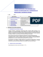Informe Diario Onemi Magallanes 17.12.2014