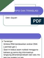 Transkripsi Dan Translasi