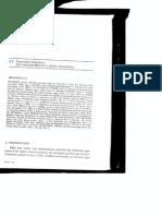 Derecho Procesal Penal Argentino (Julio Maier)