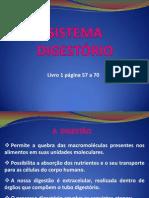 sistemadigestrio-120809093332-phpapp01