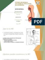 Nutricion Enteral Fisiopatologia