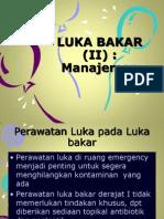 Luka Bakar (II)