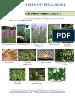 Field Guide Rapid Assessment
