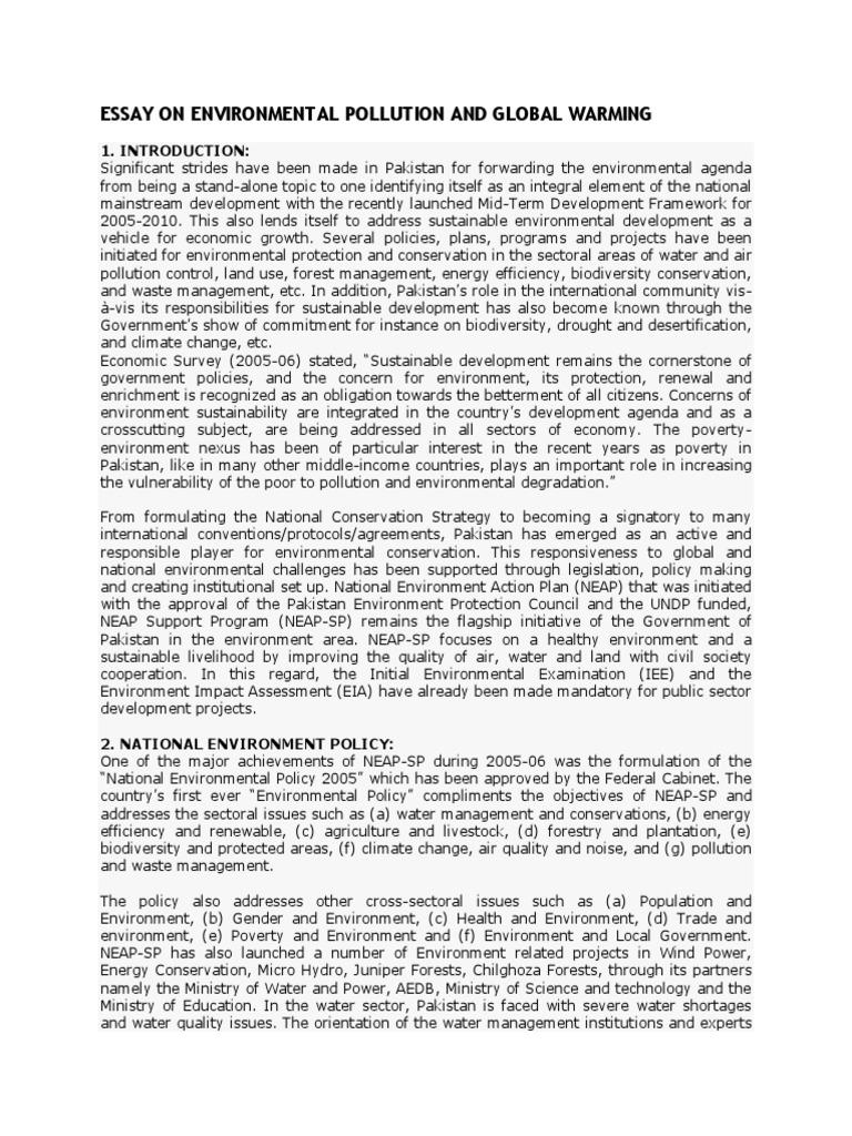 an essay on environmental pollution